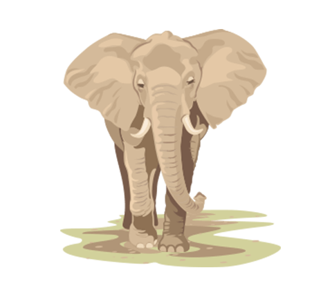 besmarter_facts_icon_elephant_480x430